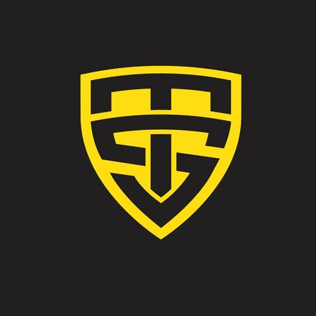 TS logo. letter based shield icon