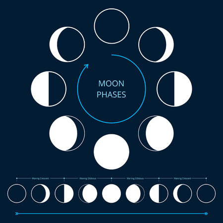 Moon phases icons. Astronomy lunar phases. Whole cycle from new moon to full moon. Crescent and gibbous signs. Vector eps8 illustration. Vettoriali