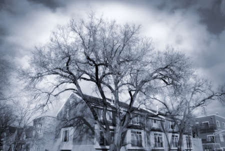 ghostly: House with dramatic trees and sky Stock Photo