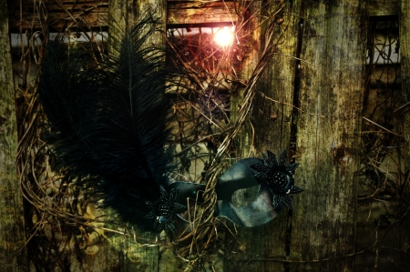 Masquerade - Black Venetian Mask on Weathered Fence Stock Photo - 15534864