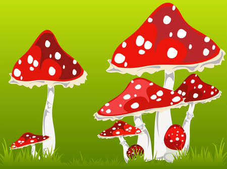 Illustration of fly agarics on a green grass, forest landscape Vector