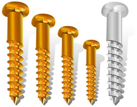 Set of different size new screws for construction, an engineering illustration Vector