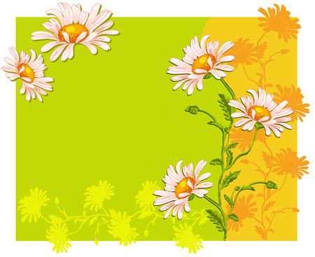 oxeye: Summer flower background with ox-eye daisys in yellow green colors, pattern