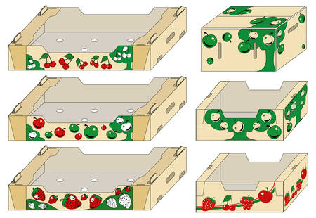 garden maintenance: Packing container of different form for fresh fruit and vegetables, illustration