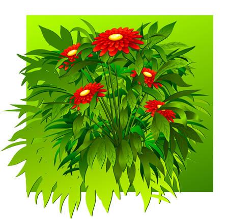 Floral background, bush of flowers on green, element for design, vector illustration Vector