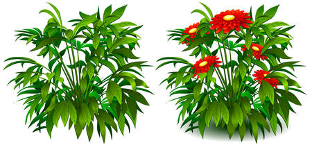 Floral background, bush of flowers on white, element for design, vector illustration Vector
