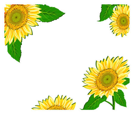 Vector illustration containing floral decoration, background for card Stock Vector - 4650237