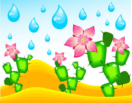 Cactuses blossoming under rain in middle of desert, illustration