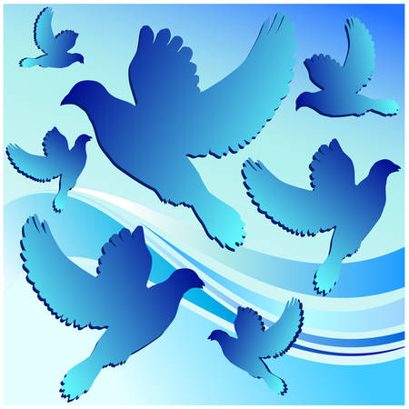 White dove, bird contour in blue background, vector illustration Vector