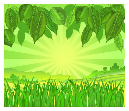 fertile: Vector background with leaf and grass in green color, illustration