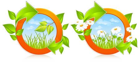fleche verte: Deux cercles de nature avec des marguerites et fl�che verte, illustration vectorielle