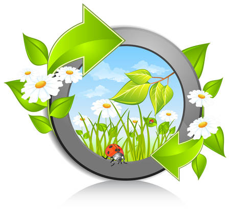 Circle with daisies, ladybug and green arrow Stock Vector - 7409585