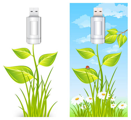 Usb flash drive with plants and flowers, vector illustration, environment concept Stock Vector - 7452437