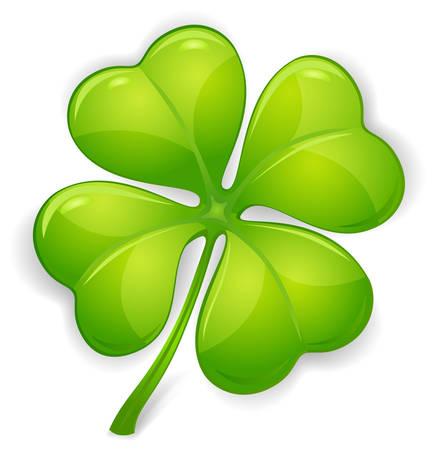 four leaf: Tr�bol de cuatro hojas aislado en blanco, ilustraci�n vectorial para el d�a de San Patricio de