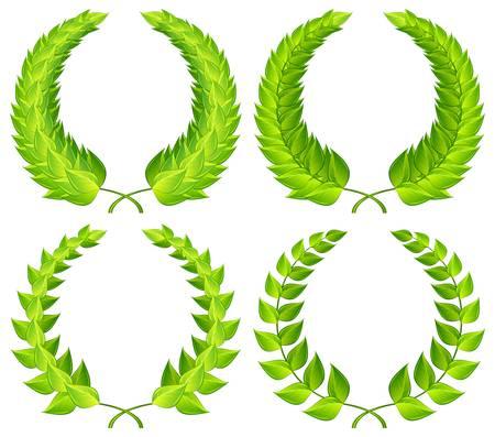 laurel leaf: Dise�o de patrones de guirnaldas de laurel verde Vectores