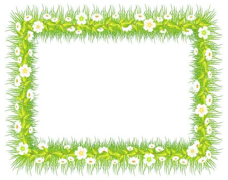 beautify: frame with green grass and flowers, isolated on white background vector illustration