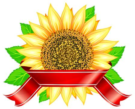flower power: Label design with sunflower & leafs and red ribbon, vector illustration