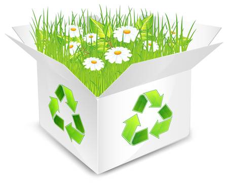 verdure: white box with green grass and flowers, isolated, vector illustration Illustration