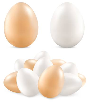 White and yellow eggs isolated on background, vector illustration  Иллюстрация
