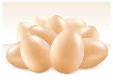 Group of white and yellow eggs isolated on background, illustration
