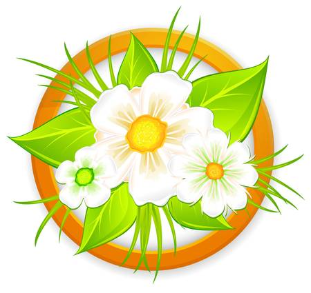 Bouquet of white daisies and green leaves in circle,illustration Stock Vector - 13716910
