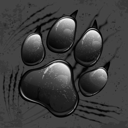 Dark animal paw print and scratches on black, vector illustration Illustration