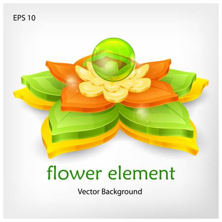 nenuphar: Water lily and green leaves & text  isolated on white, vector illustration
