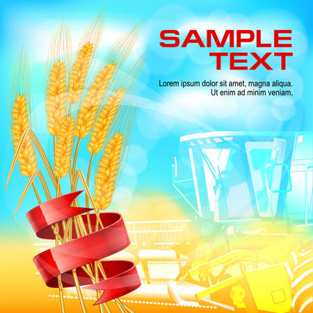 agrario: Espiga de trigo madura con cinta roja, ilustraci�n vectorial agr�cola