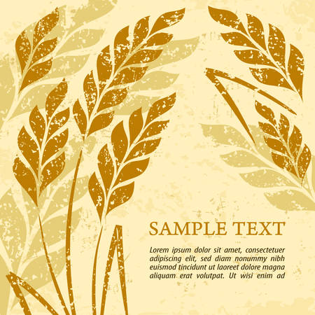 Stylized background ears of wheat on grange, vector illustration Illustration