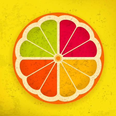 Citrus Fruit Slices on grange yellow, vector illustration