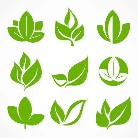 Green leaf signs, design elements, vector illustration.