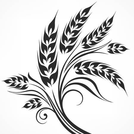Épis stylisés de blé en noir sur blanc, illustration vectorielle