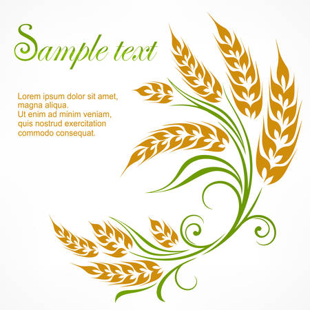 4,599 Green Wheat Stock Vector Illustration And Royalty Free Green ...