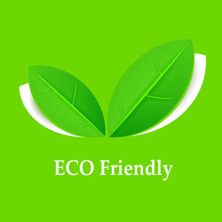green environment: Eco friendly background, leaves on green, illustration