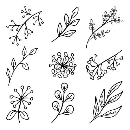 vintage flower: Set of hand drawn flowers, branches with leaves and berries silhouettes. Vector illustration