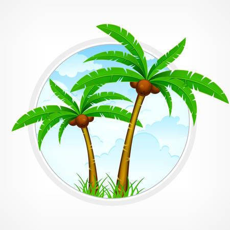 crone: Tropical palm trees with green leaves and coconuts again blue sky. Vector illustration