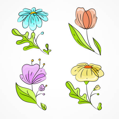 Set of colorful spring flowers, hand drawn flowers with leaves on white. Vector illustration