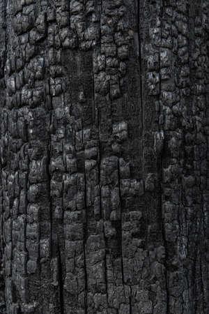 Burned wood texture close up.