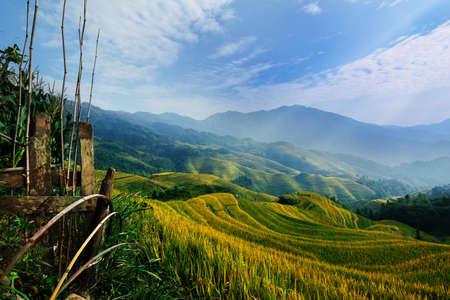 Rice terrace in Guangxi China photo
