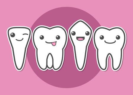 premolar: Tooth types. Kinds of teeth. Dental vector illustration