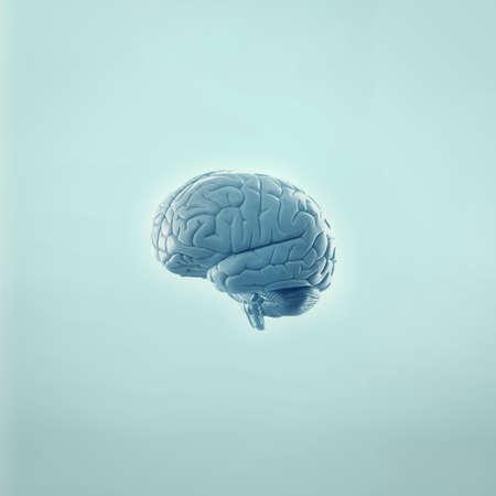 blue brain: Human brain