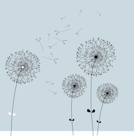dandelion wind: The vector dandelion  Illustration