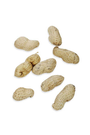 monkey nuts: Monkey nuts or peanuts. Stock Photo