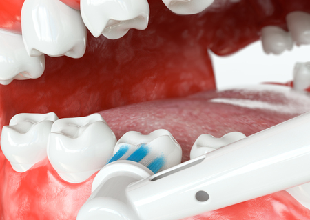 Tooth cleaning external surfaces - 3D Rendering