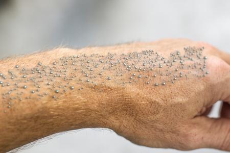 Nanocząsteczki widoczne na ludzkiej skórze -- renderowanie 3D