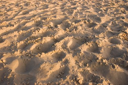 Sand background with footprints photo