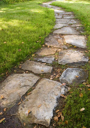 stepping stone: A stepping-stone pathway surrounded by green grass