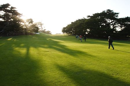 A group of golfers walk on a golf course as sunbeams stream through the trees. photo