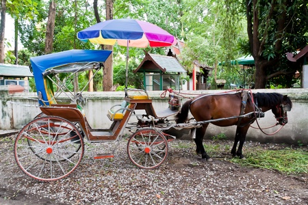Colorful horse carriage in Chiang Mai Thailand photo