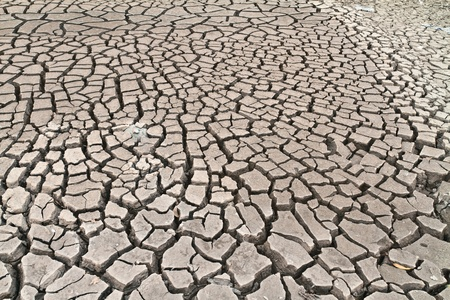 arid ground land cracked by drought from global warming photo